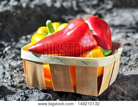 Sweet Pepper In A Basket In The Garden