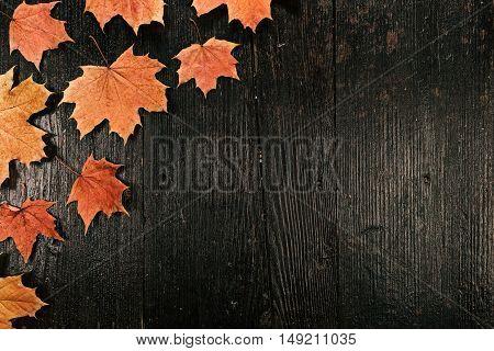 Corner recipe frame of fall maple leaves. Flat lay