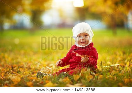 a Happy baby on the nature autumn