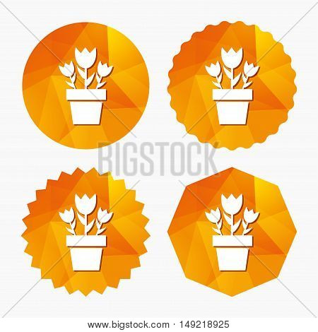 Flowers in pot icon. Bouquet of roses. Macro sign. Triangular low poly buttons with flat icon. Vector
