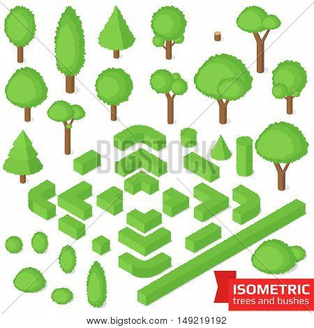 Isometric trees, hedge and bushes set. City, park and outdoor plants. Vector illustration