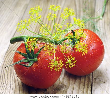 Tomato and dill with water drops on wooden table