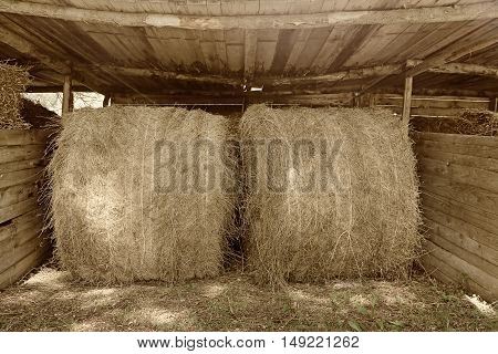 Hay bale in the countryside in Italy