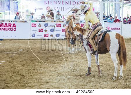 GUADALAJARA MEXICO - SEP 01 : Charros participate at the 23rd International Mariachi & Charros festival in Guadalajara Mexico on September 01 2016.
