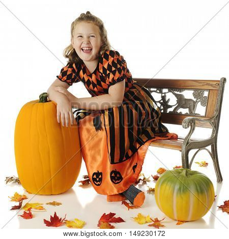 An elementary girl in a shiny orange and black dress laughing as she leans on a tall pumpkin.  She's sitting on a park bench and surrounded by colorful fall leaves.  On a white background.