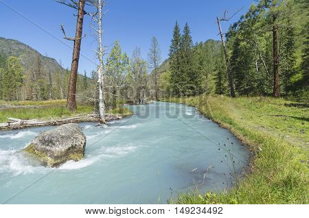 Big rock in the middle of a mountain river. Sunny summer day. The Kucherla river Altai Mountains Russia.