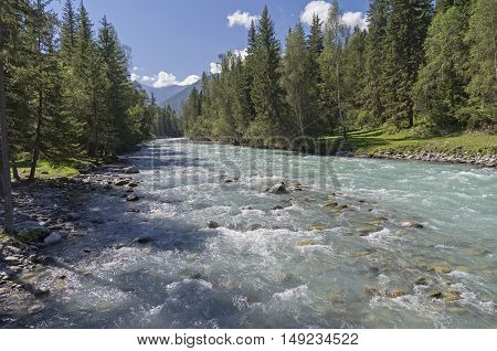 The Kucherla river Altai Mountains Russia. Sunny summer day.