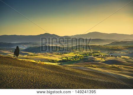Tuscany Maremma sunset. Trees farmlands hills and field country landscape. Italy Europe.