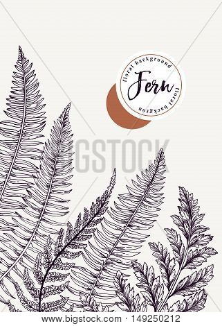 Vector background with leaves and tree of fern.