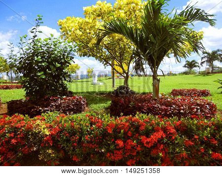 Beautiful garden with colorful plants near the Mirador Tiscapa in the department of Managua.