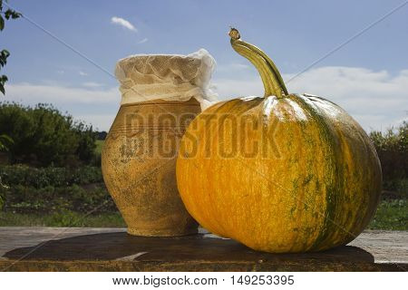Ripe pumpkin on a wooden table against the background of the rural landscape