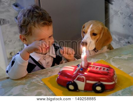 Boy three years and a Beagle dog sitting at table beside birthday cake with a candle