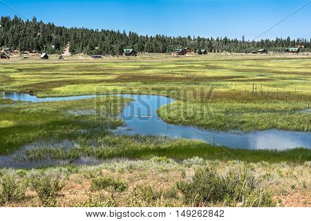 View of the field of Duck Creek Village in Dixie National Forest, Utah
