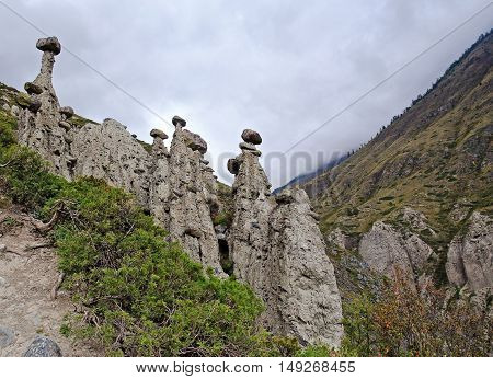 Stone mushrooms. Natural phenomenon in Altai mountains. Russia