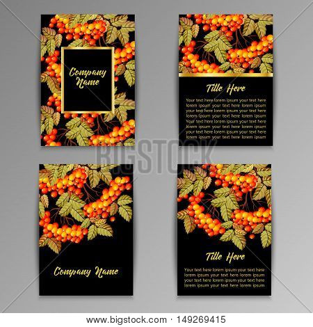 Set of flyers brochures templates design. Cards with rowan.