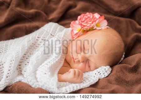 Newborn baby with flower on head  sleeping