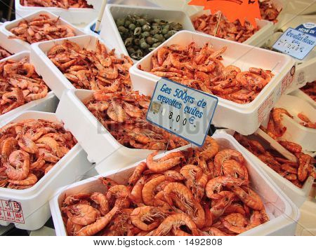 Fresh Shrimps - Food Market.