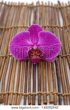 Red orchid on mat
