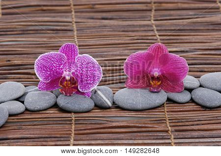 Pink and red orchid with stones on mat