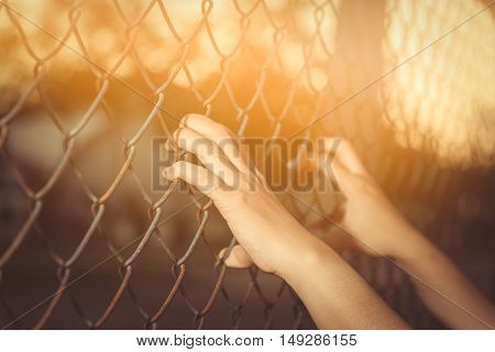 Hand holding on chain link fence on sunset.