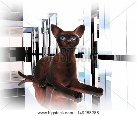 Proud burmese cat. The cat is located on a floor. 3D illustration