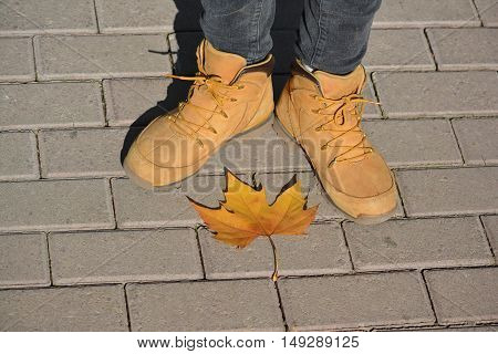 Girl's feet in autumn shoes on pavement with one fall yellow maple leaf