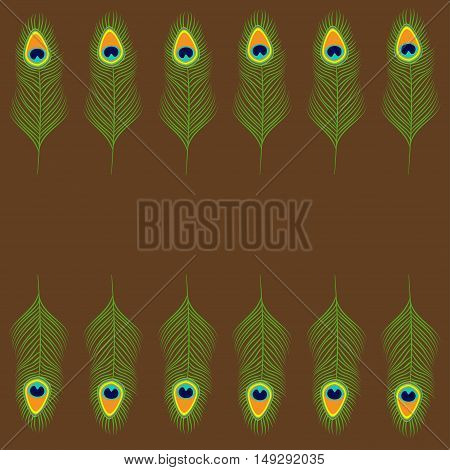 Peacock feather set collection. Beautiful frame. Exotic tropical bird colorful tail. Isolated. Brown background. Flat design. Vector illustration