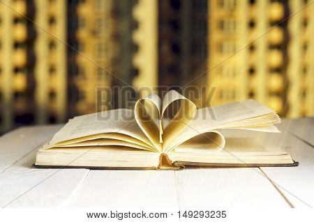 flower on the book in front of the window in the morning.