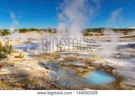 Beautiful Geysers in Norris Basin at Sunny day, Yellowstone National Park, WY