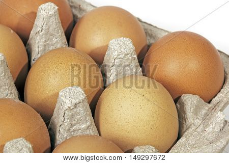 Close up studio shot of packaged chicken eggs textures and patterns