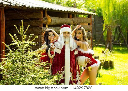 Santa Claus with sexy girls in red peignoirs near fir on wooden building background outdoor