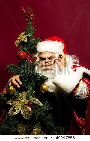 Serious santa claus man in eyeglasses and red Christmas suit hugs beautiful xmas tree