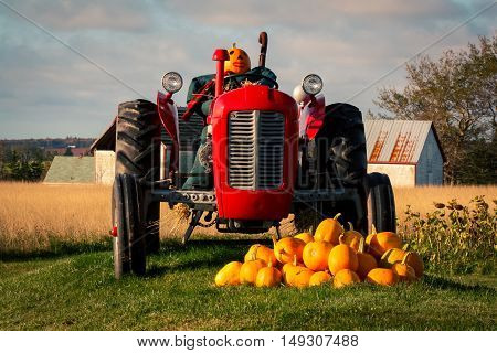 Fall display with a tractor and pumpkins