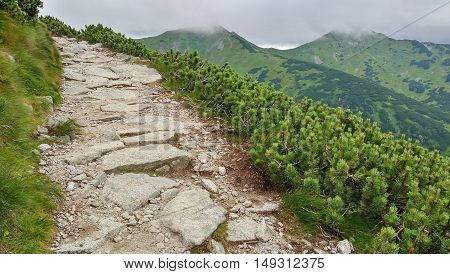 Rocky trail high in the mountains. Mountain peaks are hidden by clouds. Kasprowy Wierch, Tatra Mountains, Poland.
