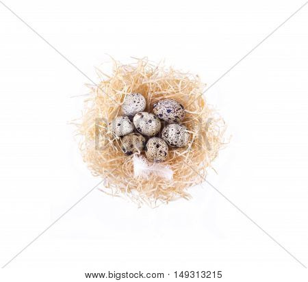 Quail Eggs In A Nest On Top Of The Form. Straw, Quail Eggs, Isolated.