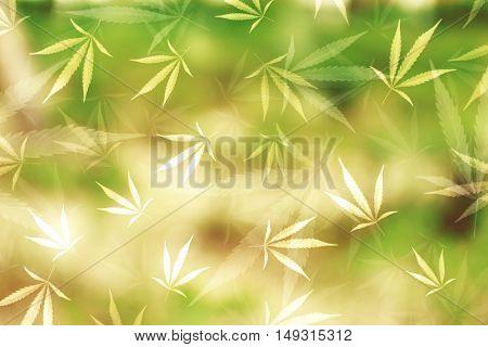 Seamless pattern of marijuana leaves on green background.