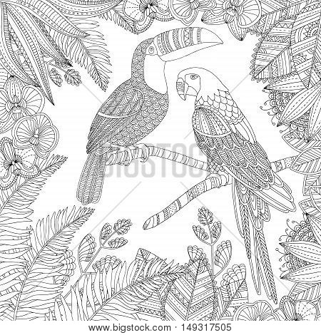 Vector hand drawn toucan bird and ara parrot tropical illustration for adult coloring book. Freehand sketch for adult anti stress coloring book page with doodle and zentangle elements.