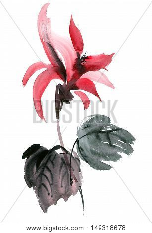 Watercolor painted red flower. Hand drawn illustration in style sumi-e u-sin gohua.