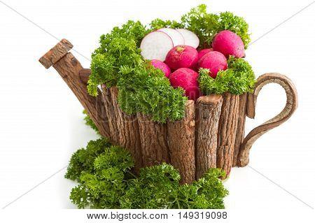 Organic Radishes in wood pot on white background