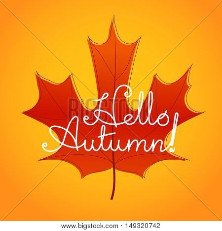 Hello autumn logo. Color maple leaf vector illustration
