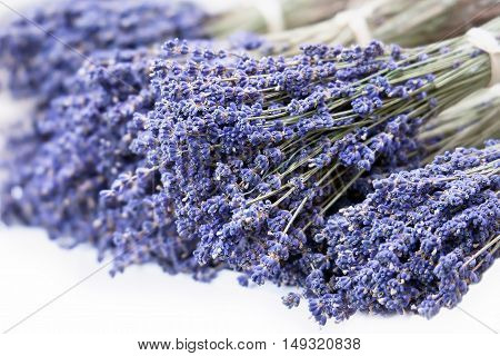 Fresh lavender handmade bunches on white background