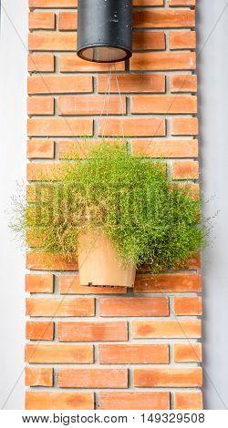 Vintage Filter : Flower Pot Hanging Orange Brick Post