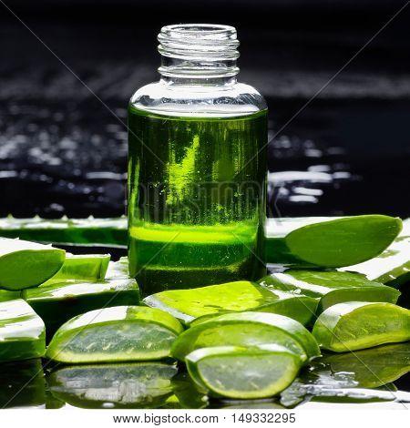 Spa still life- aloe with lotion