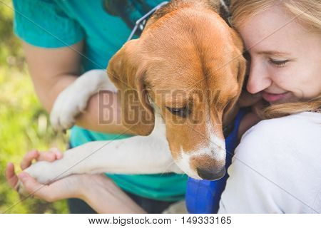 Beautiful smiling woman playing with her dog. Woman and man with their nice dog in the park. summer walk with a dog. Beagle breed dog.