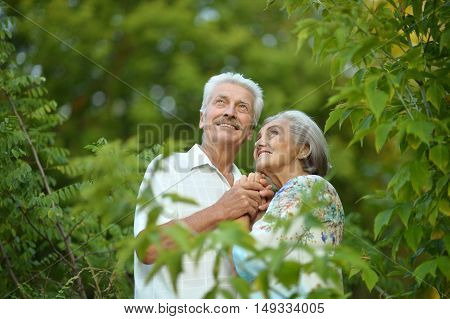 Nice Mature couple in a spring park