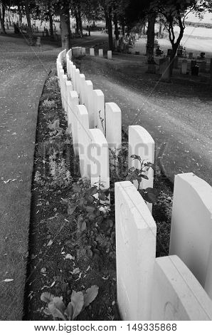 A view of gravestones in a war cemetery
