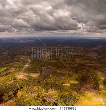 Beautiful panoramic photo of the forest right up to the horizon line. Aerial view. From above. Picture taken using the copter.