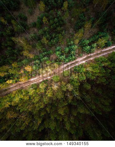 Beautiful picture of the road in the lush green coniferous forest. Aerial view. From above. Picture taken using the copter.