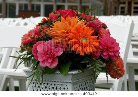 Wedding Flowers On Display