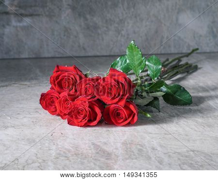Red roses on stone background/ Proposal/ Selective focus